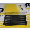 Vis de culasse GLASER 205 GTI 1.6 / 1.9 - 309 GTI / GTI 16 après 04.1987